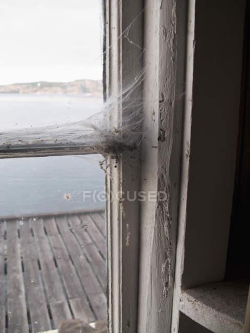 Nahaufnahme von Spinnweben auf Fensterrahmen — Stockfoto