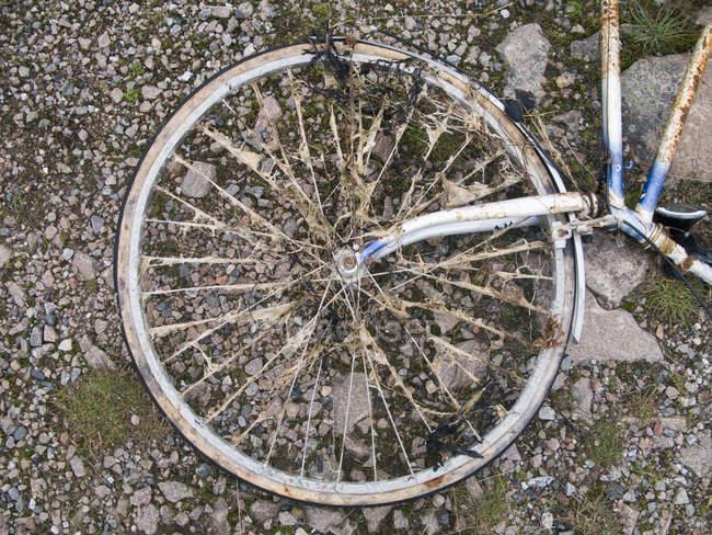 Wheel of old bicycle lying on ground — Stock Photo