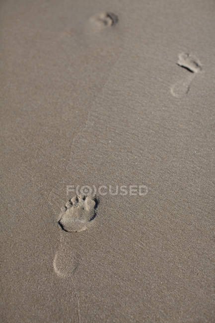 Footprints in wet sand on sunny day — Stock Photo