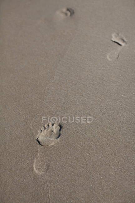 Empreintes de pas dans le sable humide par temps ensoleillé — Photo de stock