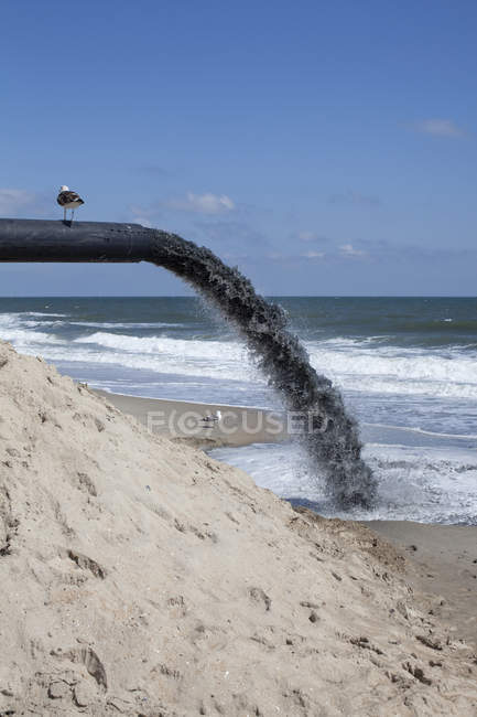 Seagull perching on large pipe pumping dirt onto beach — Stock Photo