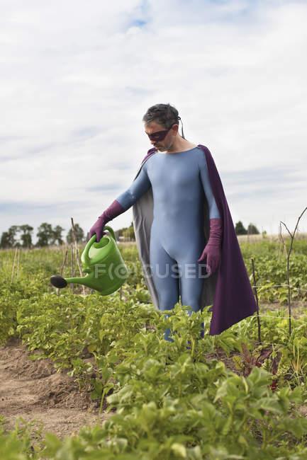 Uomo maturo in costume del supereroe innaffiare le piante mentre levandosi in piedi all'orto — Foto stock