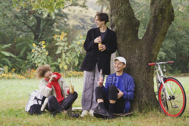 Щасливі друзів питної Сік під час відпочинку в дерево траві в парку — стокове фото