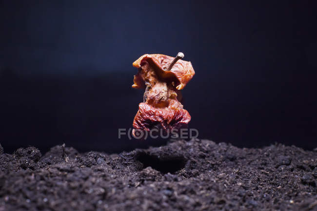 Primer plano de la manzana seca levitando sobre el suelo por la noche — Stock Photo