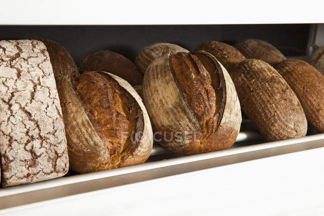 Loaves of bread at shelf on bakery counter — Stock Photo