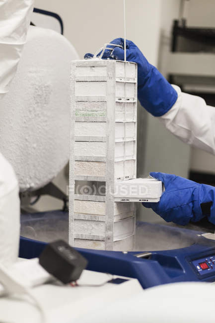 Crop scientist hands holding frozen storage compartment at laboratory table — Stock Photo