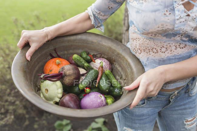 Sezione centrale della donna che tiene verdure in contenitore — Foto stock