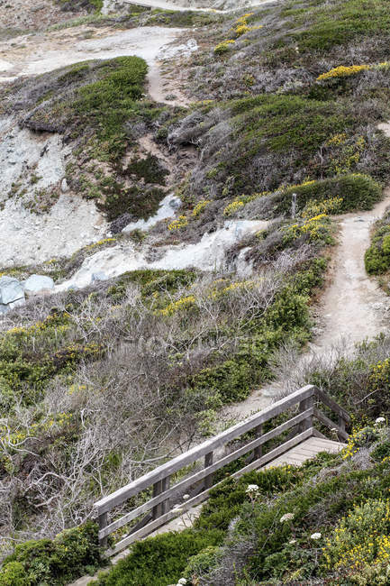 High angle view of wooden steps and pathway leading down hill — Stock Photo