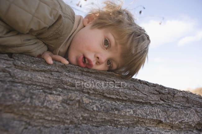 Junge liegt auf Baumstamm — Stockfoto