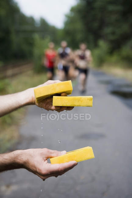 Crop hands holding wet sponges for athletes running in triathlon — Stock Photo