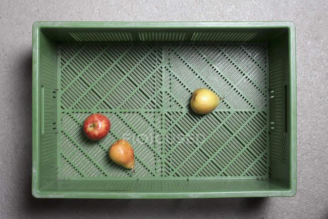 Drei Fruchtstücke in Plastikkiste — Stockfoto