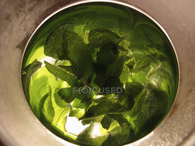 Distorted reflections of fresh mint in silver bowl — Stock Photo