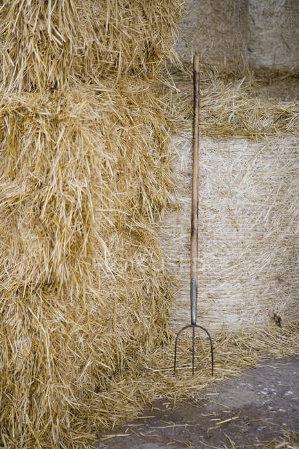 Pitchfork leaning on wall by bale of hay — Stock Photo