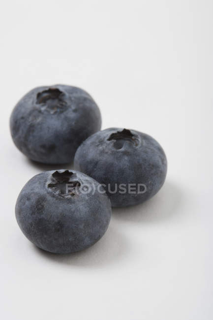 Close up of three blueberries on white background — Stock Photo
