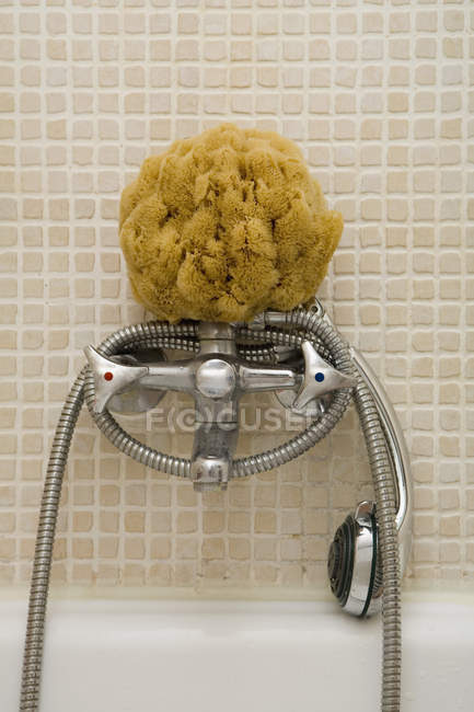 Bath sponge and shower head on faucet — Stock Photo