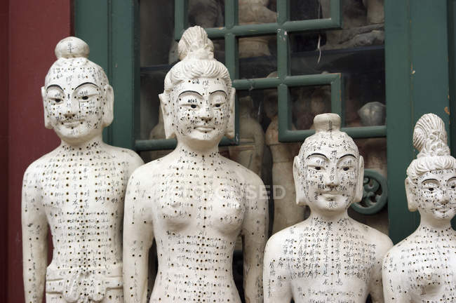 Row of acupuncture statues at antique market — Stock Photo