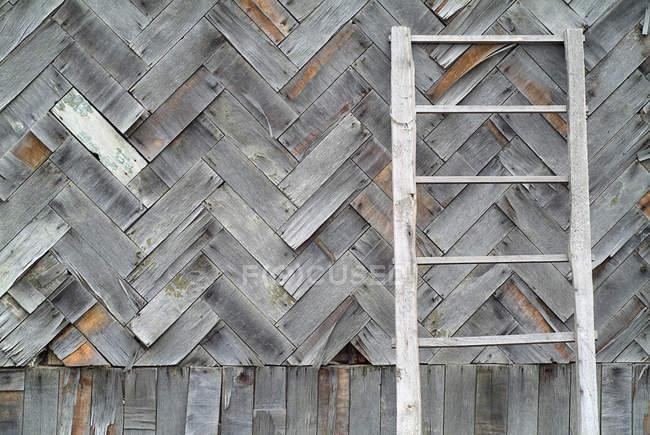 Сельская лестница, опирающаяся на деревянный забор — стоковое фото