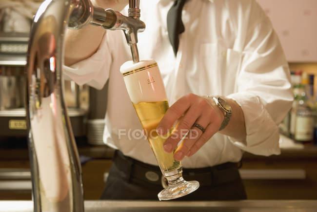 Животик бармен разлива пива на счетчик — стоковое фото