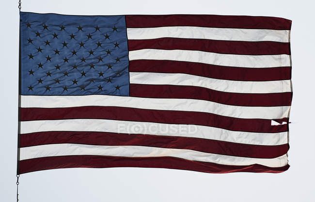 American flag against cloud — Stock Photo