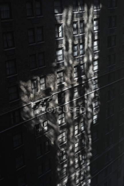 Vista ad angolo basso della facciata ombreggiata dell'edificio — Foto stock