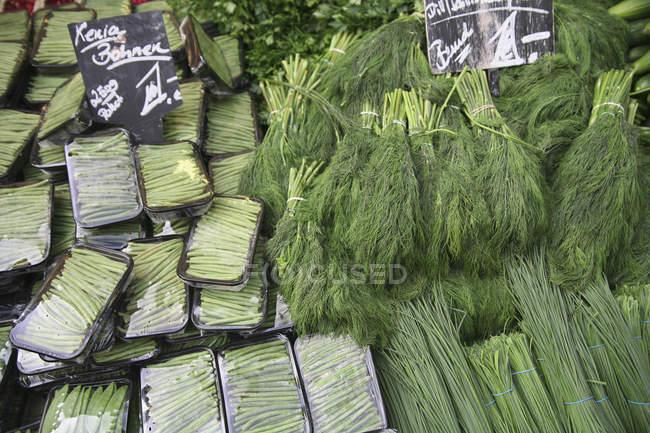 Stapel von grünem Gemüse und Kräutern am Bauernmarktstand — Stockfoto