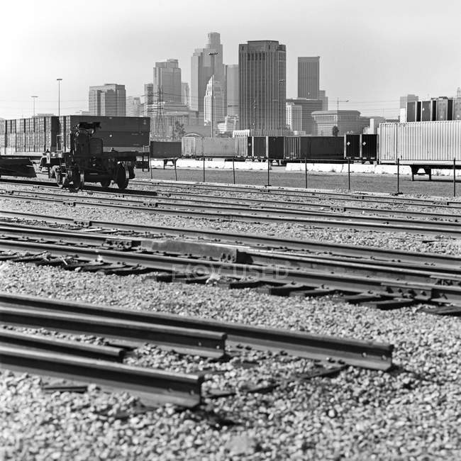 View of cargo containers and skyscrapers — Stock Photo