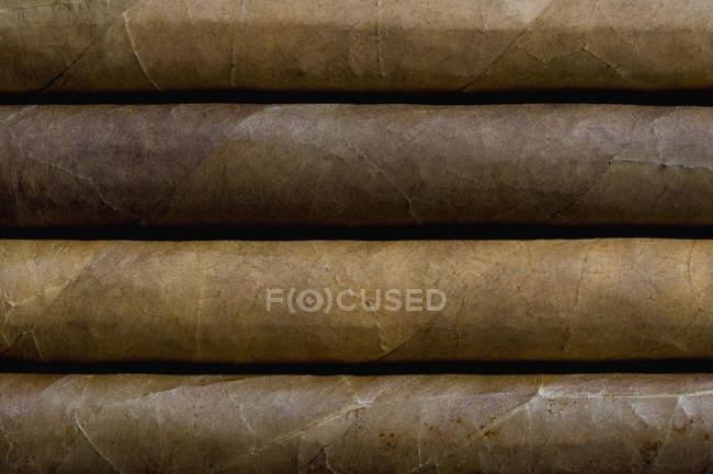 Tir de plein cadre de quatre cigares côte à côte — Photo de stock