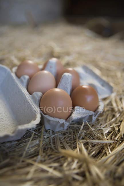 Stillleben von Eiern in Box mit Stroh — Stockfoto