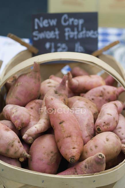 Basket of sweet potatoes — Stock Photo