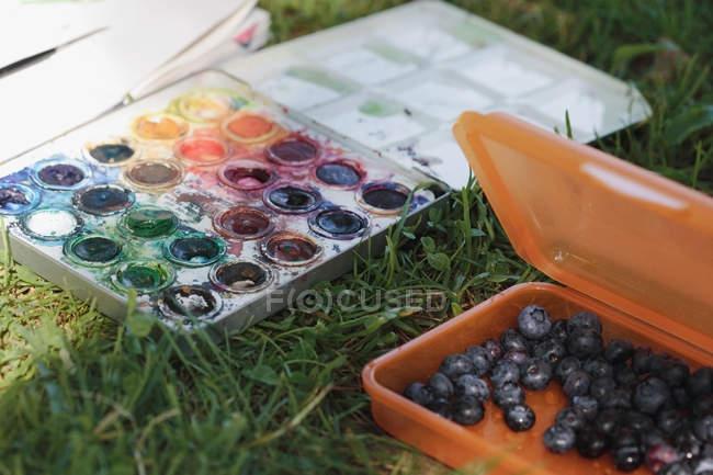 Peintures aquarelles et récipient de bleuets sur herbe — Photo de stock
