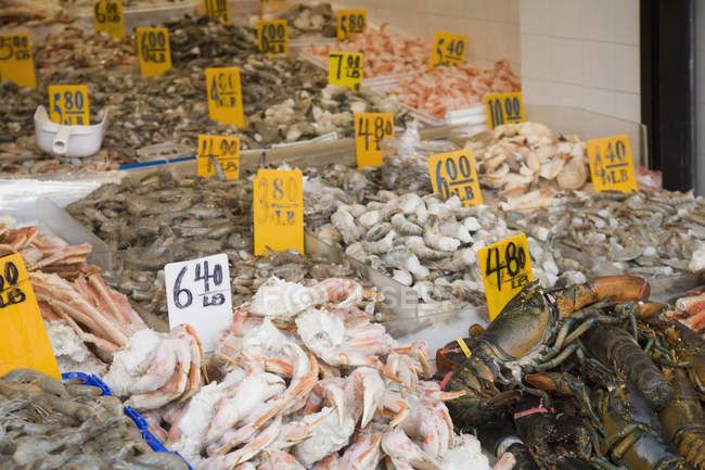 Various seafood on stall at market — Stock Photo