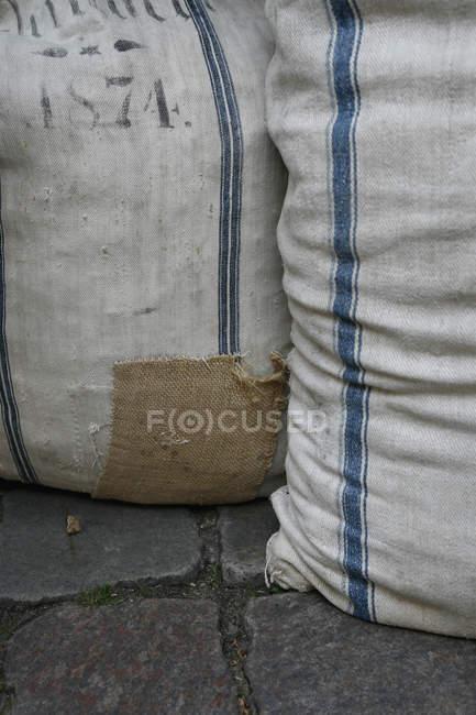 Cultivar dos sacos de tela en el pavimento - foto de stock