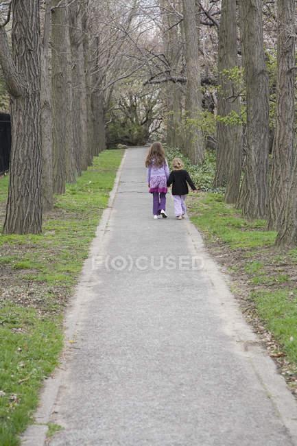 Vista posteriore giovani ragazze che si tengono per mano e camminano lungo un percorso — Foto stock