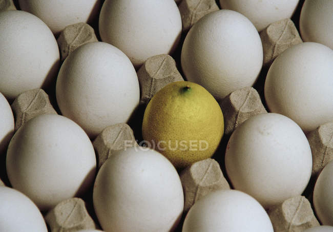 Close up view of lemon surrounded by eggs in tray — Stock Photo