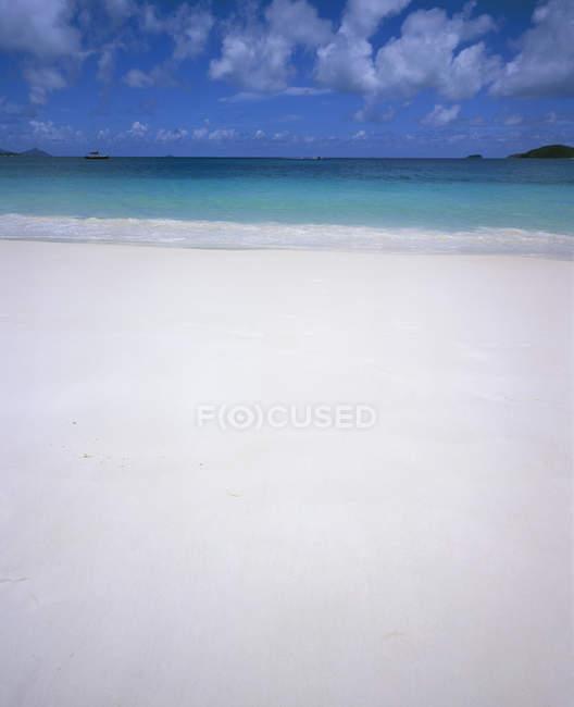 Idílica vista al paisaje tropical en día soleado - foto de stock