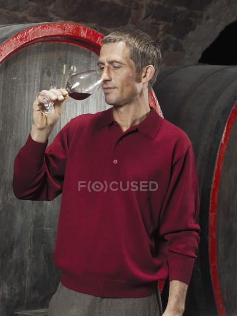 Winzer-Verkostung Rotwein im Keller — Stockfoto