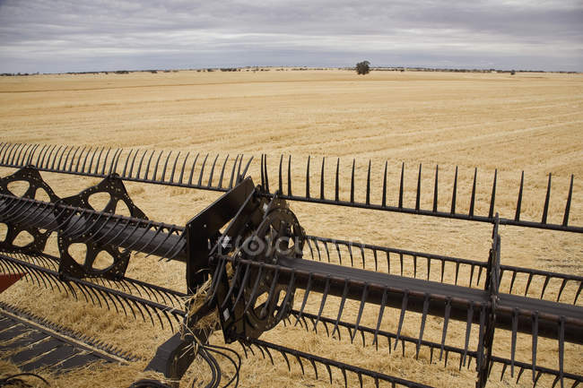 Cropped image of combine harvesting farming field — Stock Photo