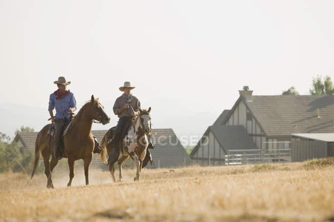 Два ковбоя едут верхом по полю — стоковое фото