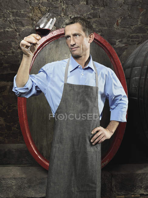 Portrait of vintner examining red wine in a glass — Stock Photo