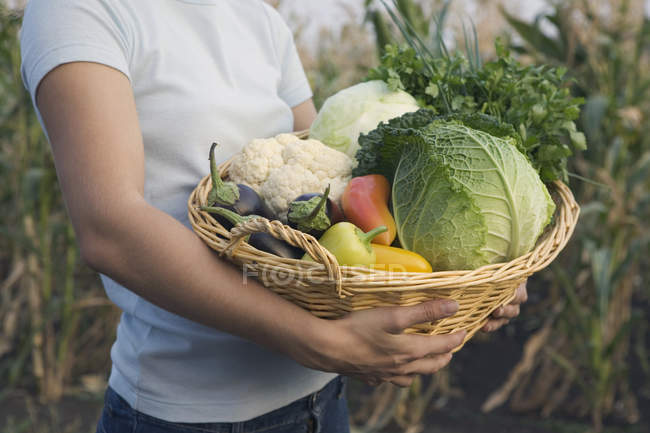 Midsection of girl carrying basket of vegetables — Stock Photo