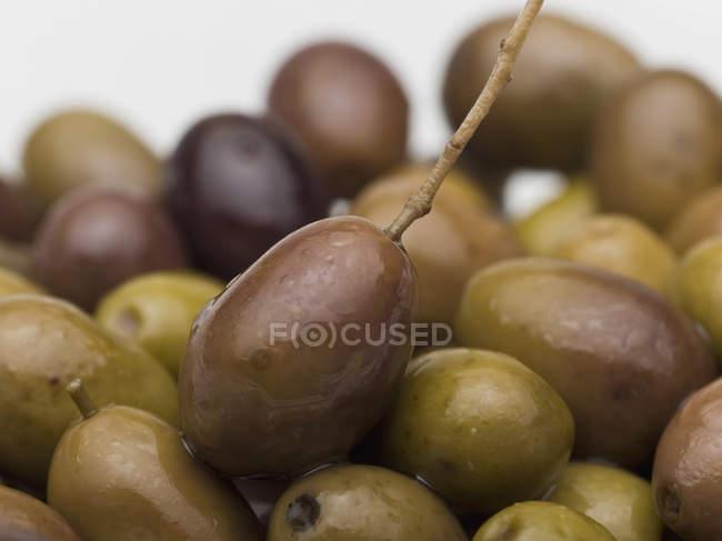 Крупным планом зрения оливки на белом фоне — стоковое фото
