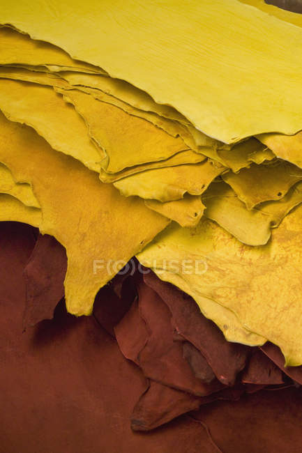 Pieces of red and yellow leather samples — Stock Photo