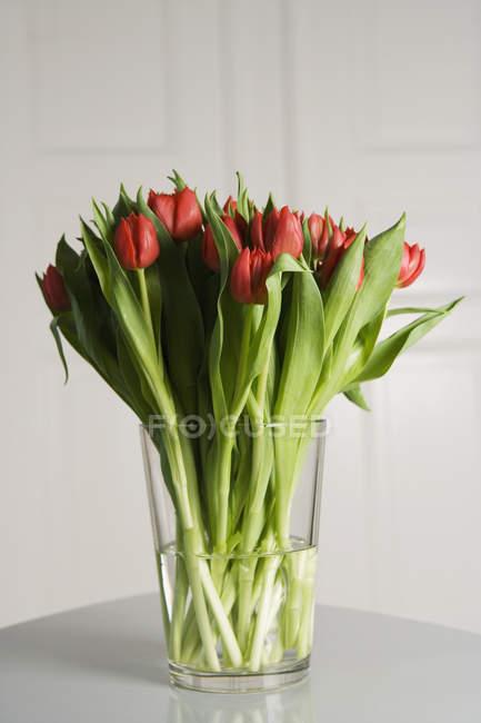 Vaso di vetro di tulipani rossi su bianco — Foto stock