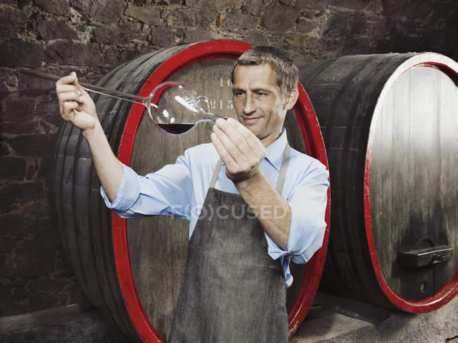 Vigneron examinant le vin rouge chez un voleur de vin — Photo de stock