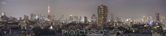 Prise de vue panoramique du lumineux paysage urbain de Tokyo dans la nuit — Photo de stock