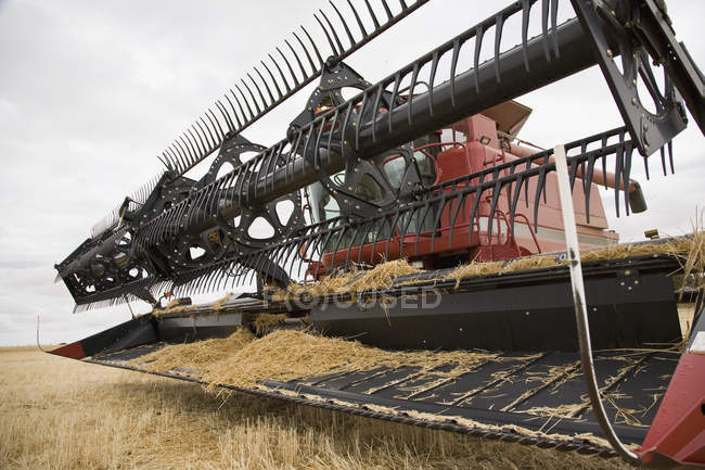 Close up of agricultural combine in farm field — Stock Photo