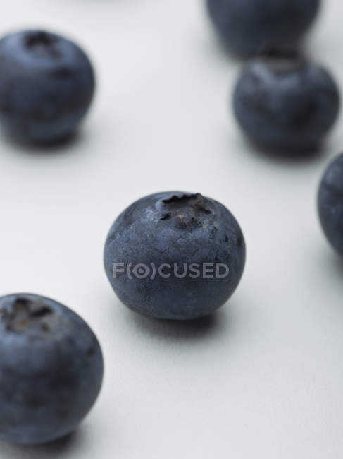 Close up view of blueberries on whitetbackground — Stock Photo