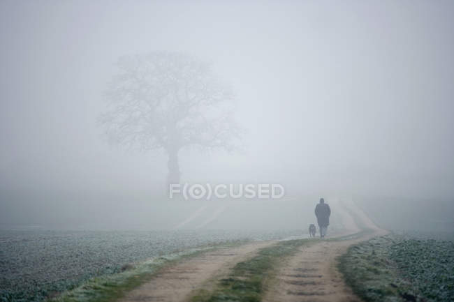 Rear view of person and dog walking along foggy country path — Stock Photo