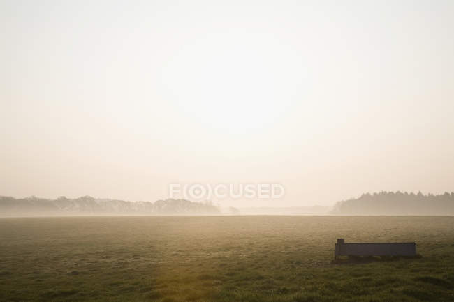 Rural flat landscape at misty sunrise — Stock Photo