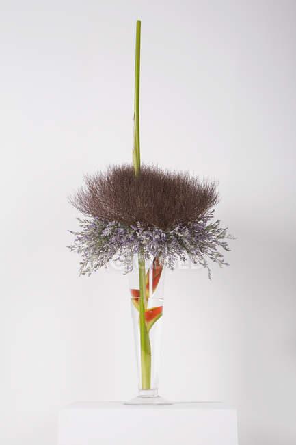 Composizione artistica floreale in vaso — Foto stock